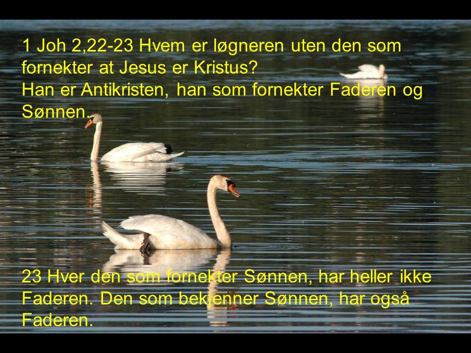 1 Joh 2,22-23 Hvem er løgneren uten den som fornekter at Jesus er Kristus Han er Antikristen, han som fornekter Faderen og Sønnen.
