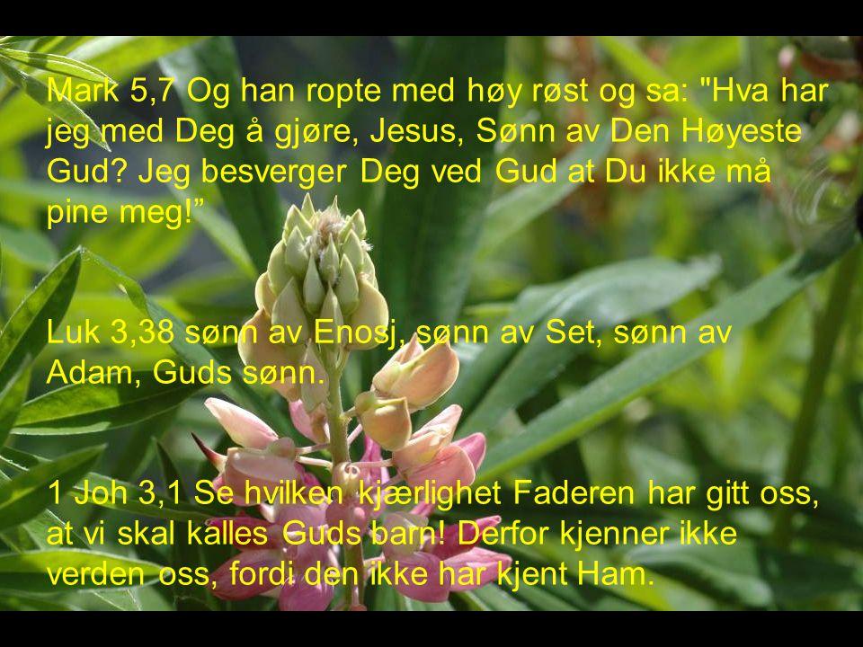 Mark 5,7 Og han ropte med høy røst og sa: Hva har jeg med Deg å gjøre, Jesus, Sønn av Den Høyeste Gud Jeg besverger Deg ved Gud at Du ikke må pine meg!