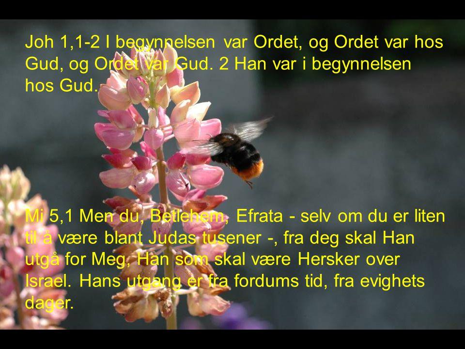 Joh 1,1-2 I begynnelsen var Ordet, og Ordet var hos Gud, og Ordet var Gud. 2 Han var i begynnelsen hos Gud.