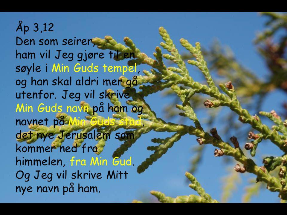 Åp 3,12 Den som seirer, ham vil Jeg gjøre til en søyle i Min Guds tempel, og han skal aldri mer gå utenfor.