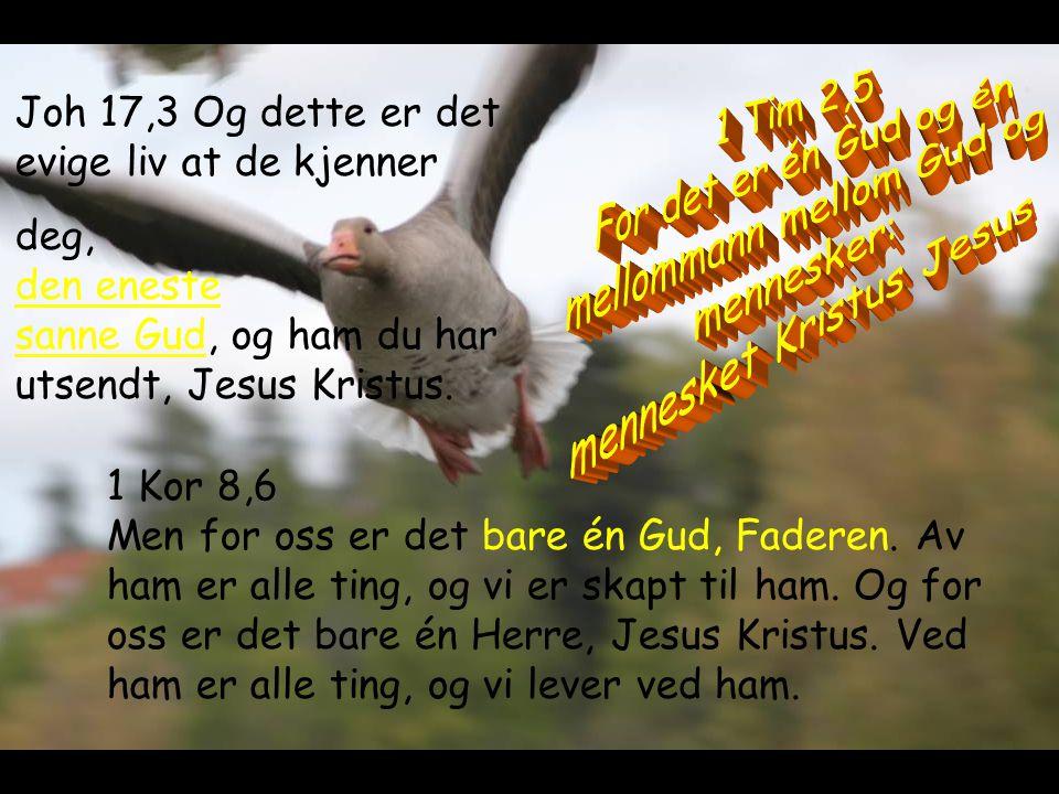 mellommann mellom Gud og mennesker: mennesket Kristus Jesus