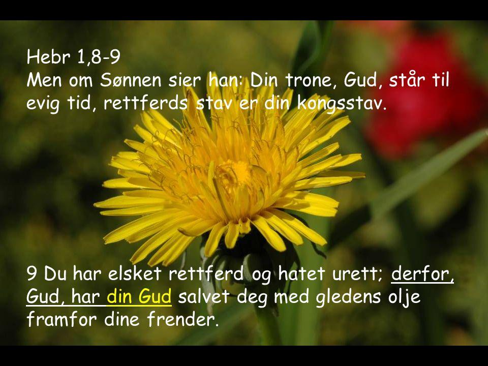 Hebr 1,8-9 Men om Sønnen sier han: Din trone, Gud, står til evig tid, rettferds stav er din kongsstav.