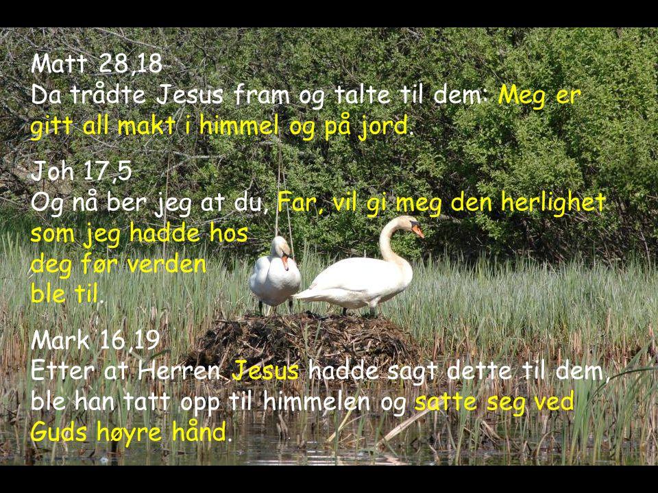 Matt 28,18 Da trådte Jesus fram og talte til dem: Meg er gitt all makt i himmel og på jord.