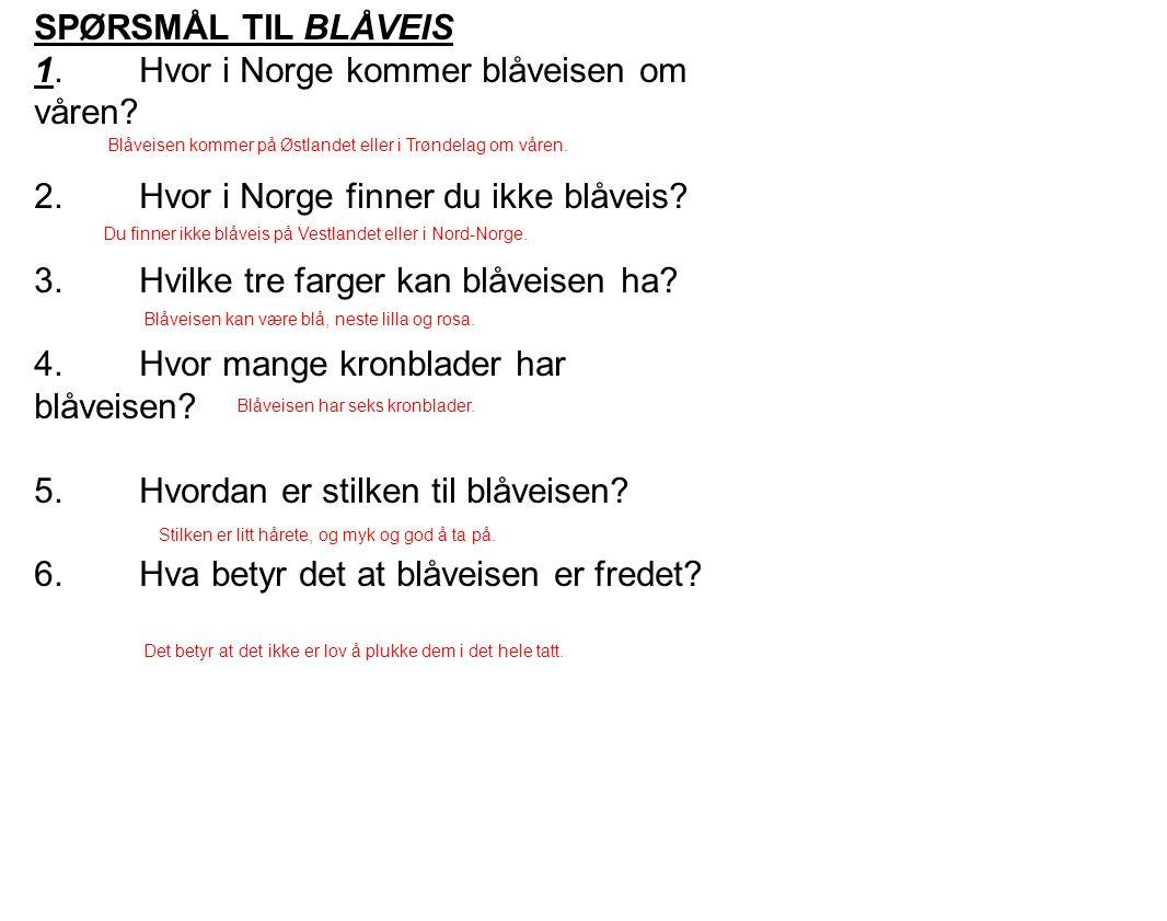 1. Hvor i Norge kommer blåveisen om våren