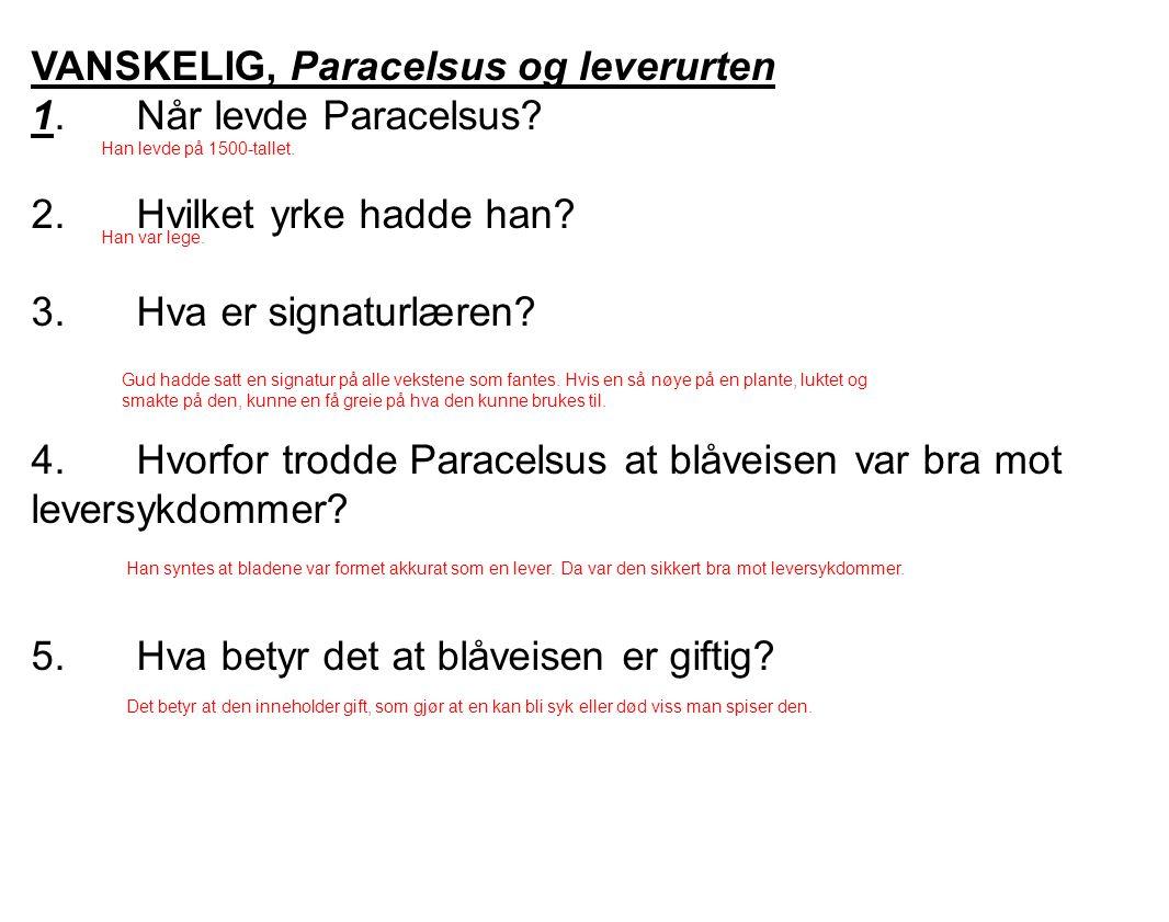 VANSKELIG, Paracelsus og leverurten 1. Når levde Paracelsus