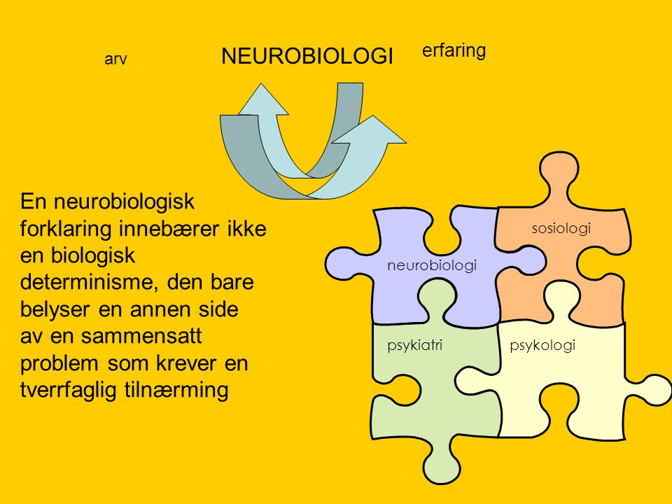 NEUROBIOLOGI erfaring. arv. neurobiologi. sosiologi. psykiatri. psykologi.