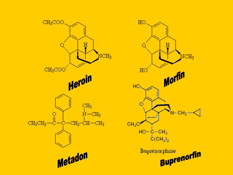 Morfin Heroin Metadon Buprenorfin