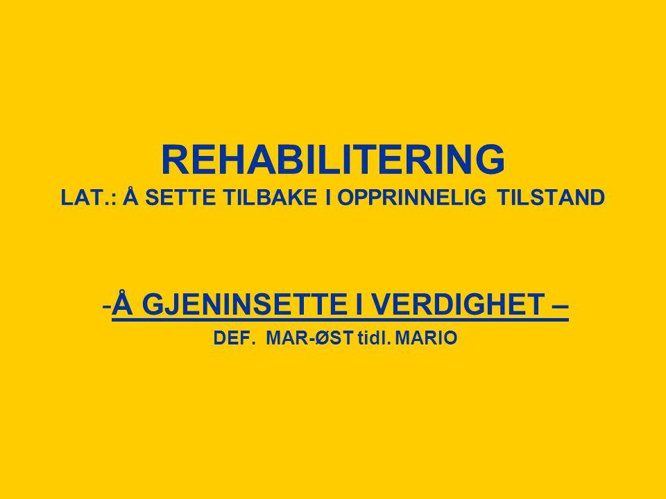 REHABILITERING LAT.: Å SETTE TILBAKE I OPPRINNELIG TILSTAND