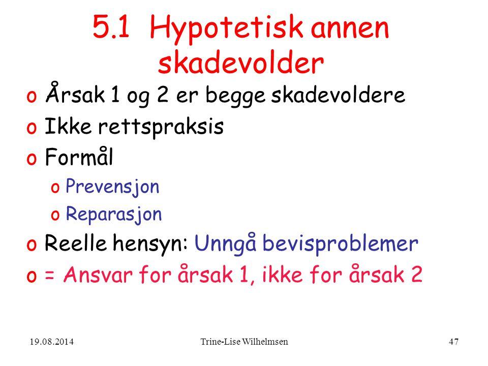 5.1 Hypotetisk annen skadevolder