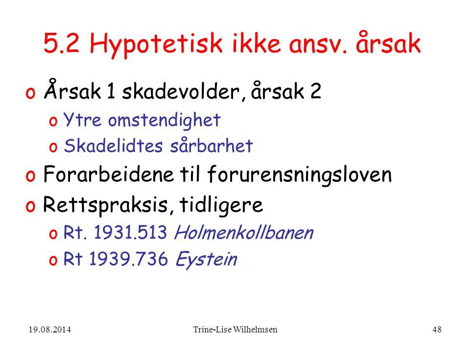 5.2 Hypotetisk ikke ansv. årsak