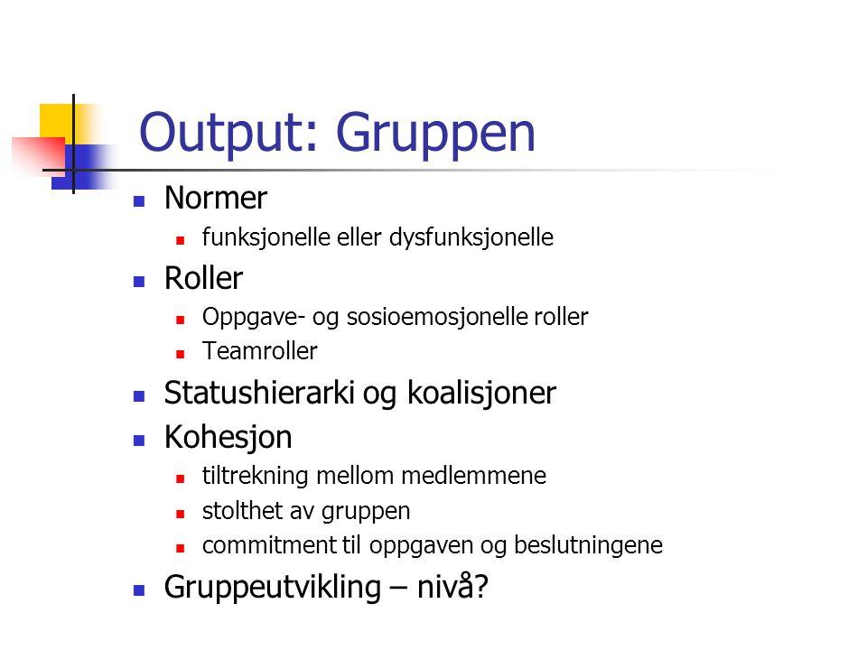 Output: Gruppen Normer Roller Statushierarki og koalisjoner Kohesjon