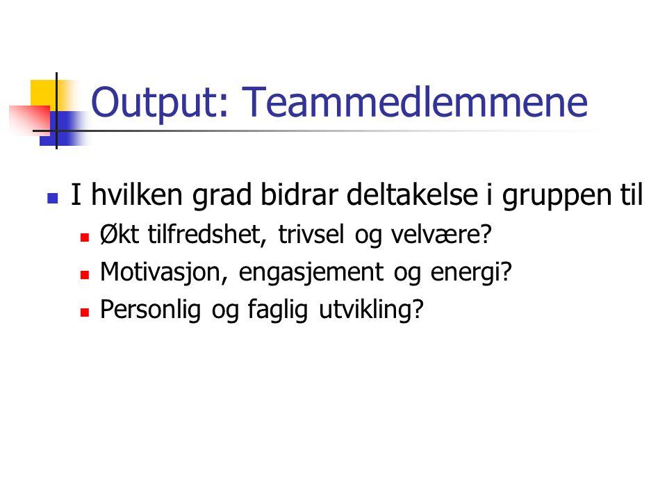 Output: Teammedlemmene