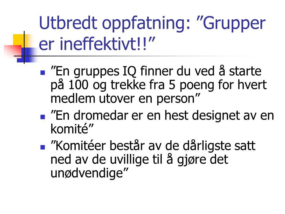 Utbredt oppfatning: Grupper er ineffektivt!!