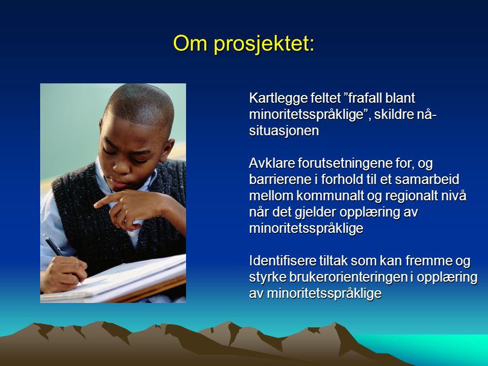Om prosjektet: Kartlegge feltet frafall blant minoritetsspråklige , skildre nå-situasjonen.