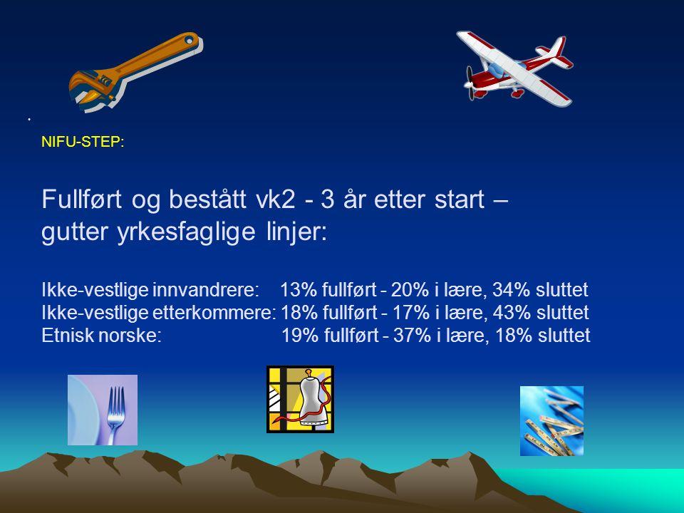 NIFU-STEP: Fullført og bestått vk2 - 3 år etter start – gutter yrkesfaglige linjer: Ikke-vestlige innvandrere: 13% fullført - 20% i lære, 34% sluttet Ikke-vestlige etterkommere: 18% fullført - 17% i lære, 43% sluttet Etnisk norske: 19% fullført - 37% i lære, 18% sluttet