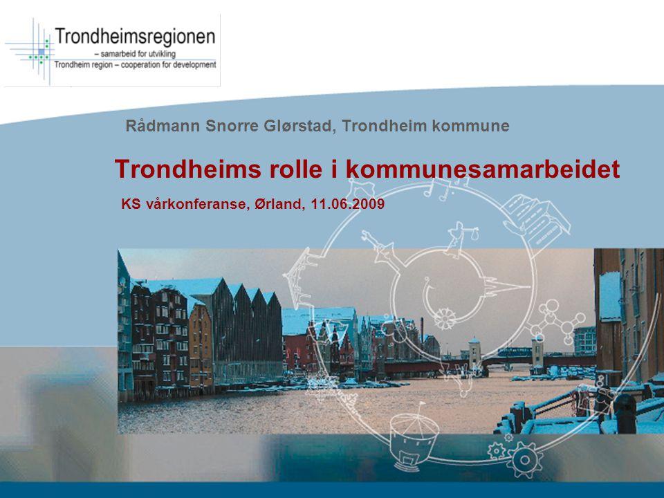 Rådmann Snorre Glørstad, Trondheim kommune