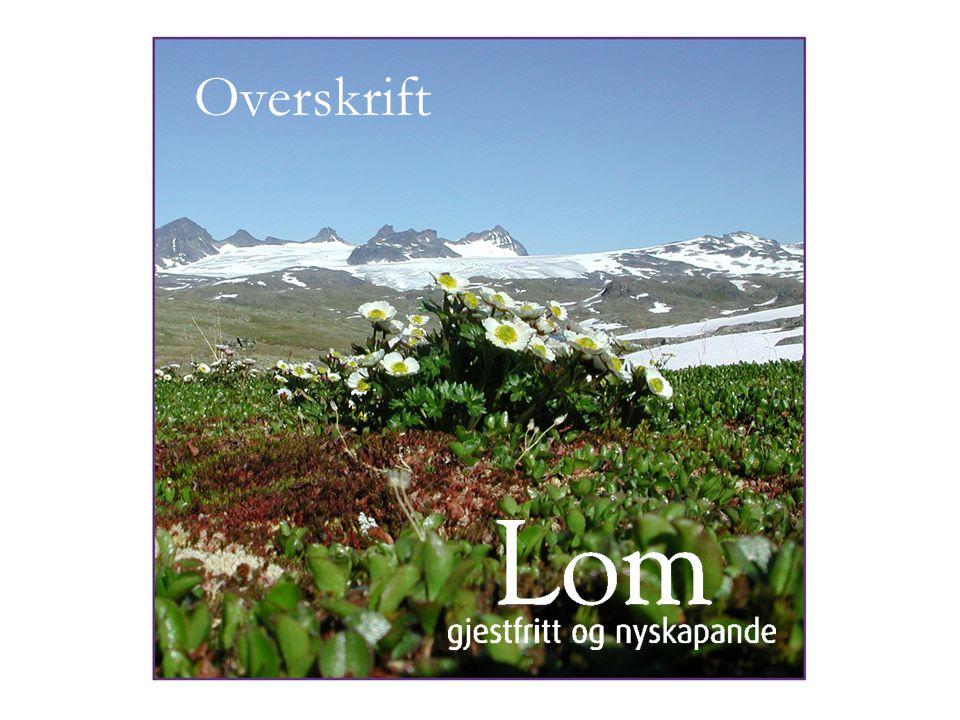 Overskrift Mal presentasjon Lom (1) heading heading