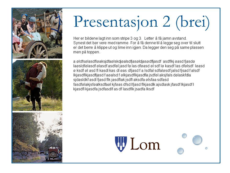 Presentasjon 2 (brei) Her er bildene lagt inn som stripe 3 og 3. Letter å få jamn avstand.