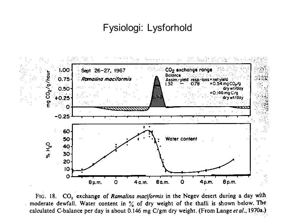 Fysiologi: Lysforhold