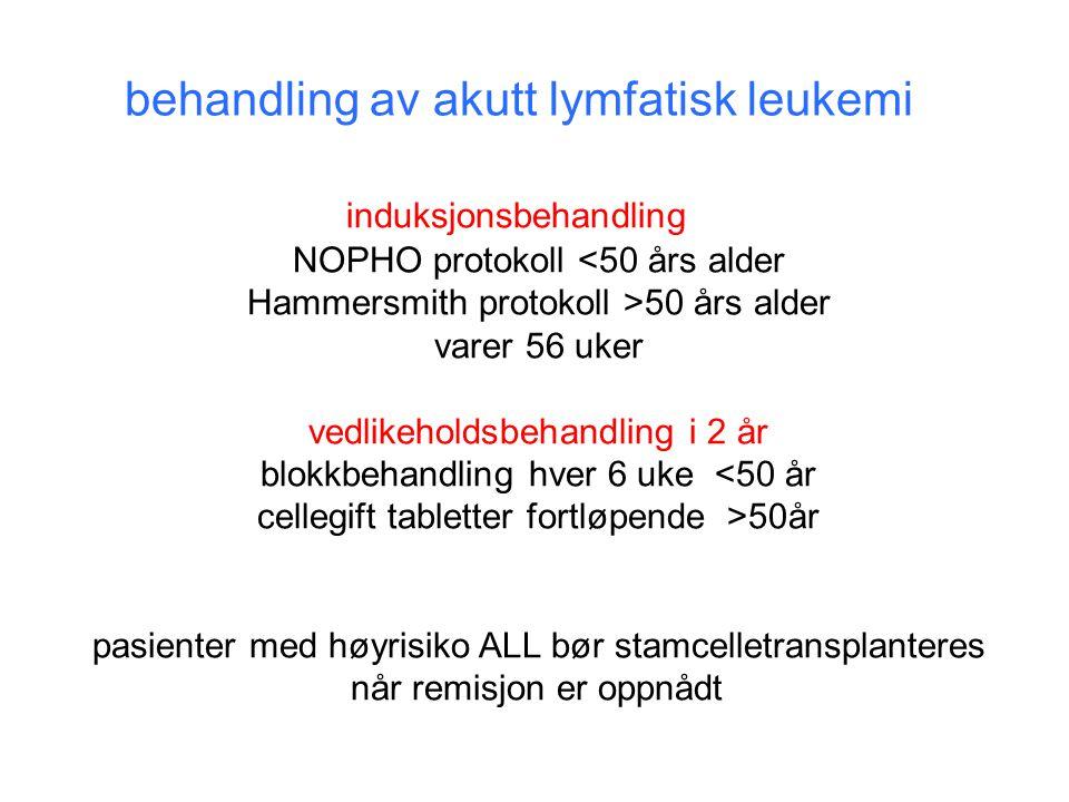 behandling av akutt lymfatisk leukemi