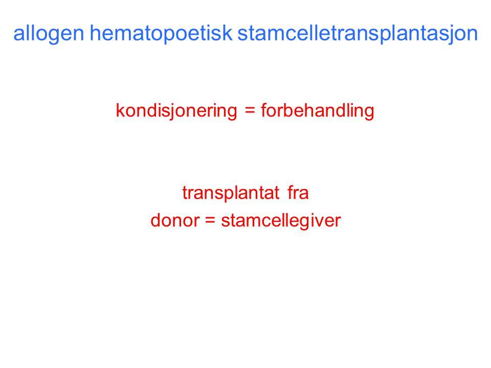 allogen hematopoetisk stamcelletransplantasjon