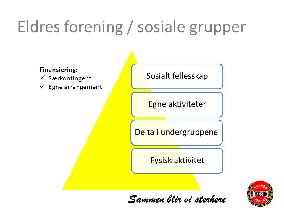 Eldres forening / sosiale grupper