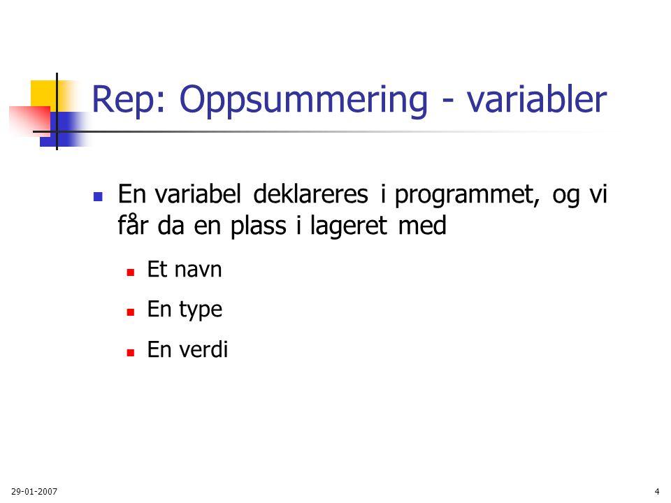 Rep: Oppsummering - variabler