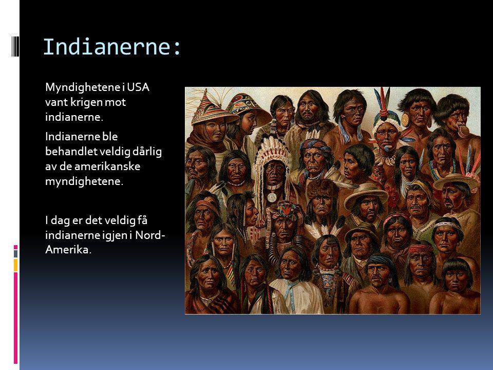 Indianerne: Myndighetene i USA vant krigen mot indianerne.