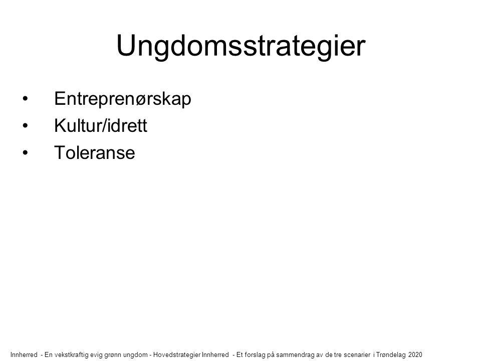 Ungdomsstrategier Entreprenørskap Kultur/idrett Toleranse