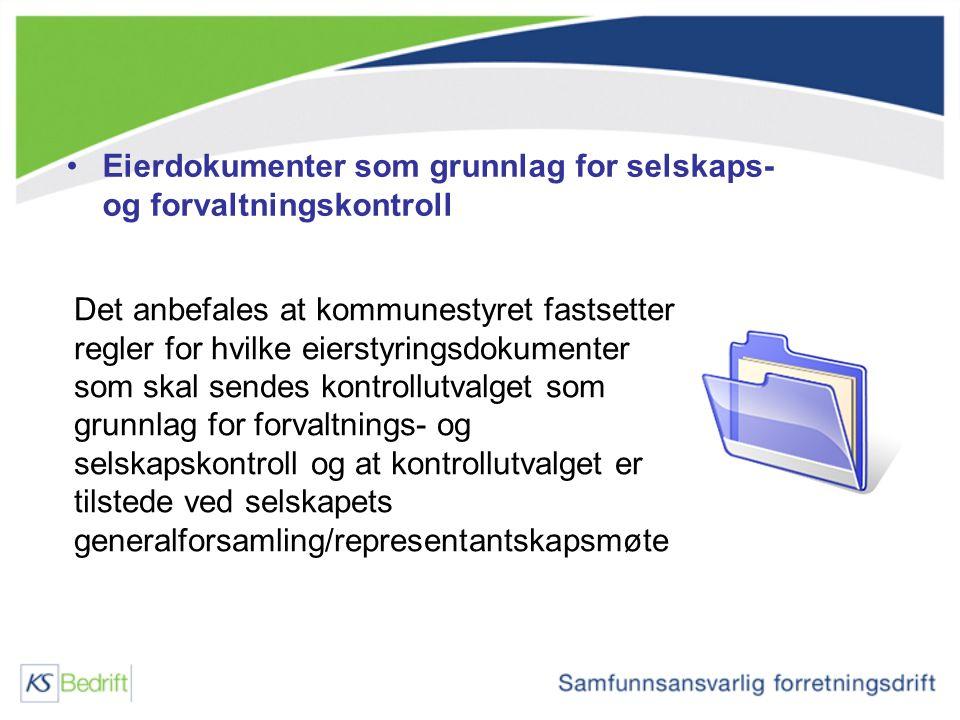 Eierdokumenter som grunnlag for selskaps- og forvaltningskontroll