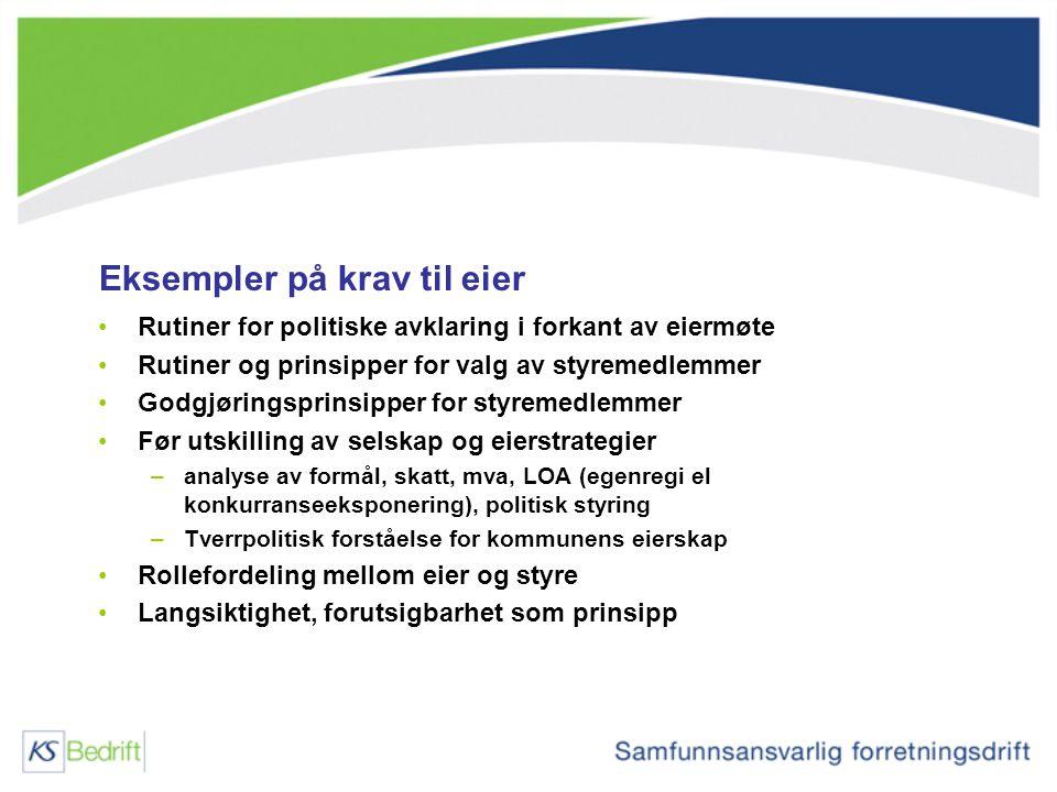 Eksempler på krav til eier