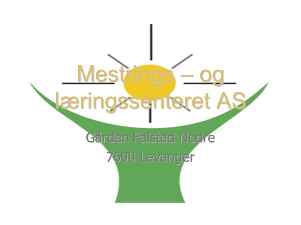 Mestrings – og læringssenteret AS