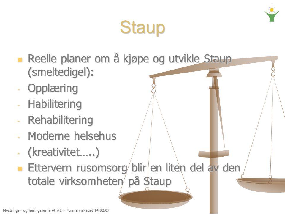 Staup Reelle planer om å kjøpe og utvikle Staup (smeltedigel):