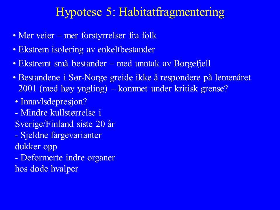Hypotese 5: Habitatfragmentering