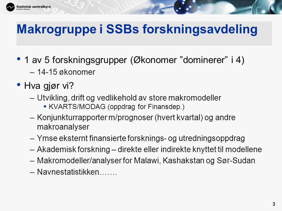 Makrogruppe i SSBs forskningsavdeling
