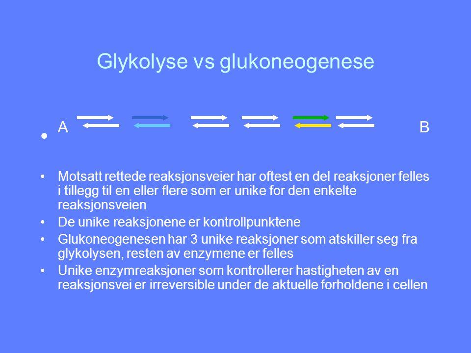 Glykolyse vs glukoneogenese
