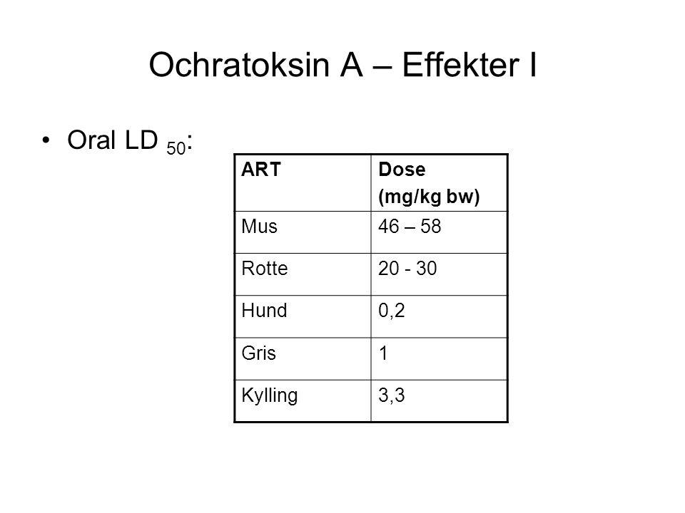 Ochratoksin A – Effekter I