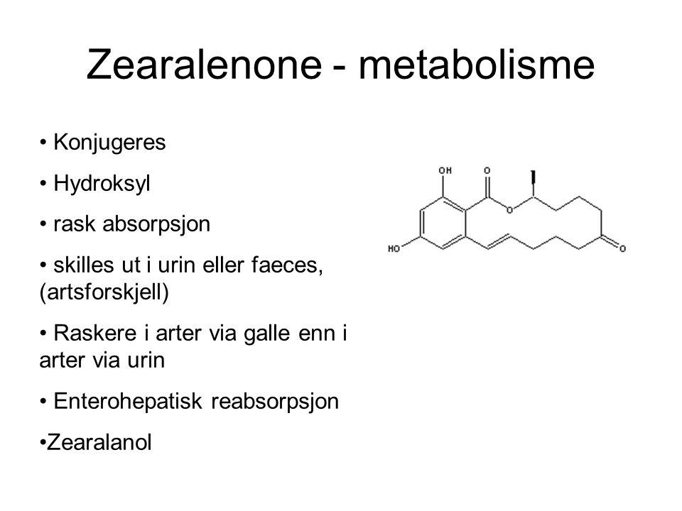 Zearalenone - metabolisme