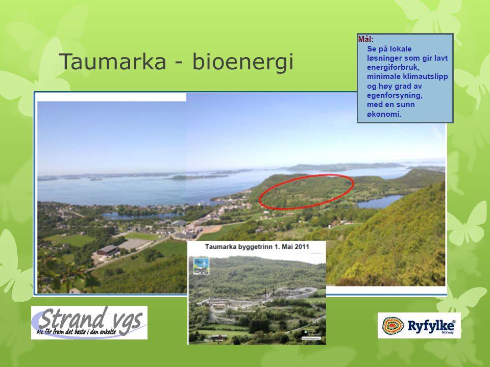Taumarka - bioenergi