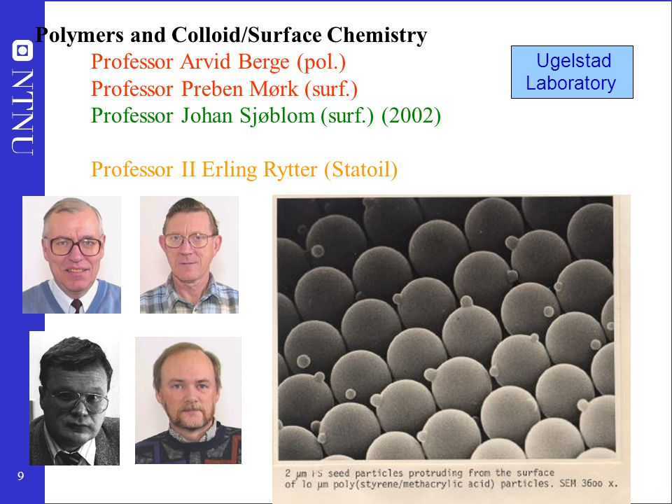 Polymers and Colloid/Surface Chemistry Professor Arvid Berge (pol.)