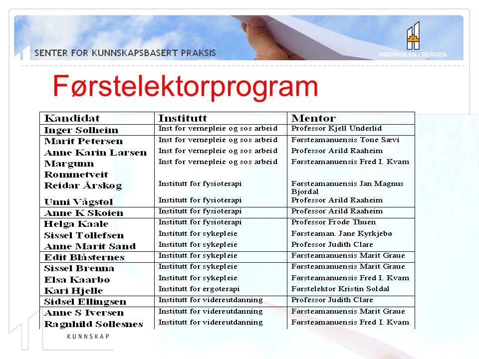 Førstelektorprogram