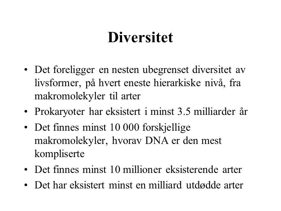 Diversitet Det foreligger en nesten ubegrenset diversitet av livsformer, på hvert eneste hierarkiske nivå, fra makromolekyler til arter.
