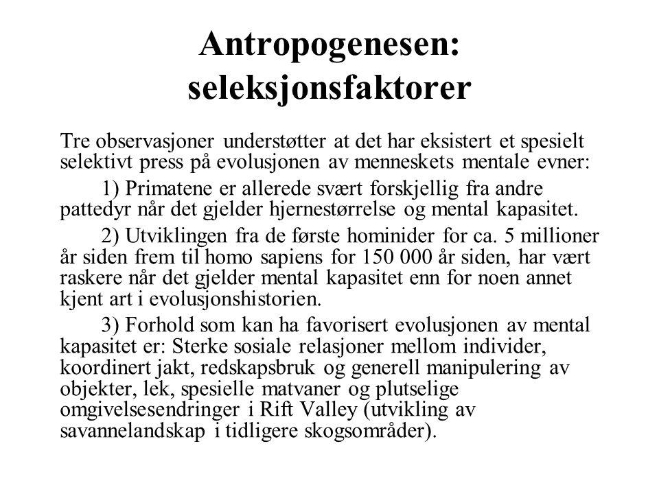 Antropogenesen: seleksjonsfaktorer