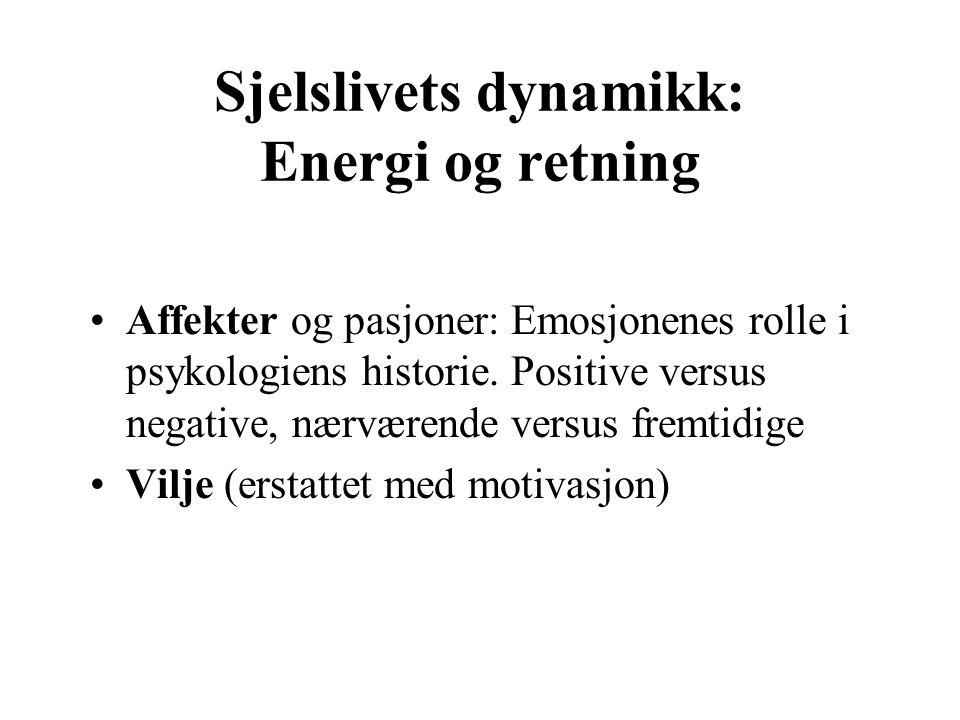 Sjelslivets dynamikk: Energi og retning