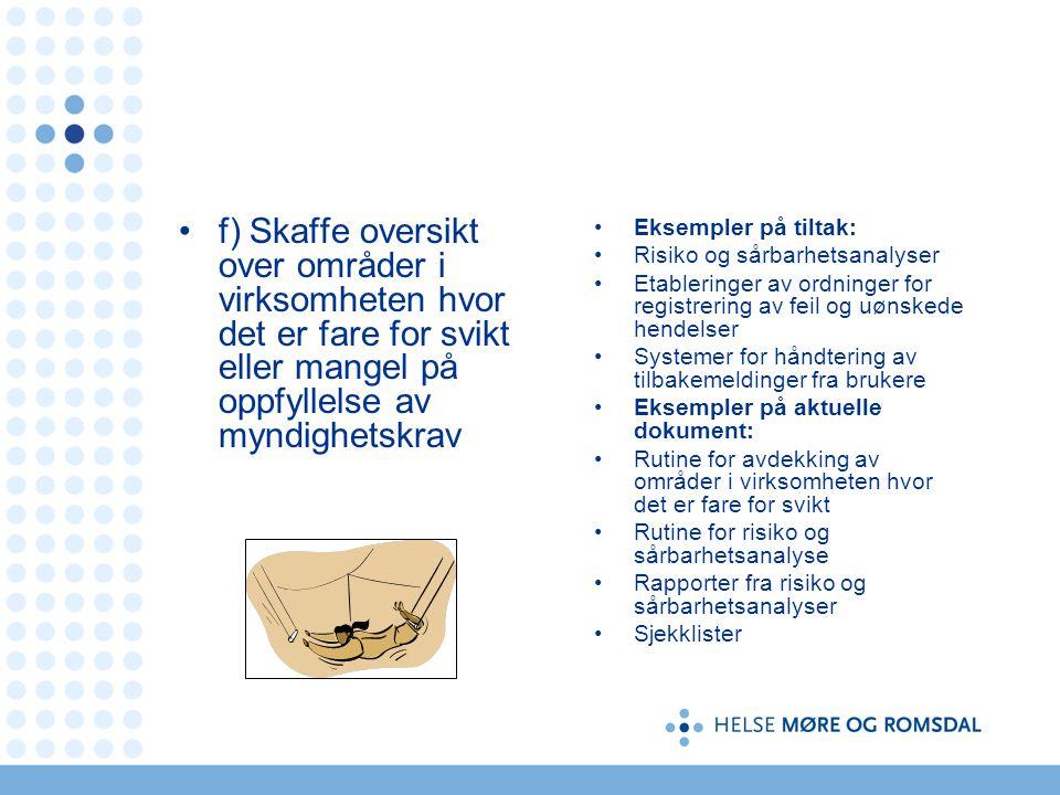f) Skaffe oversikt over områder i virksomheten hvor det er fare for svikt eller mangel på oppfyllelse av myndighetskrav