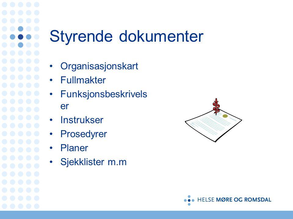 Styrende dokumenter Organisasjonskart Fullmakter Funksjonsbeskrivelser