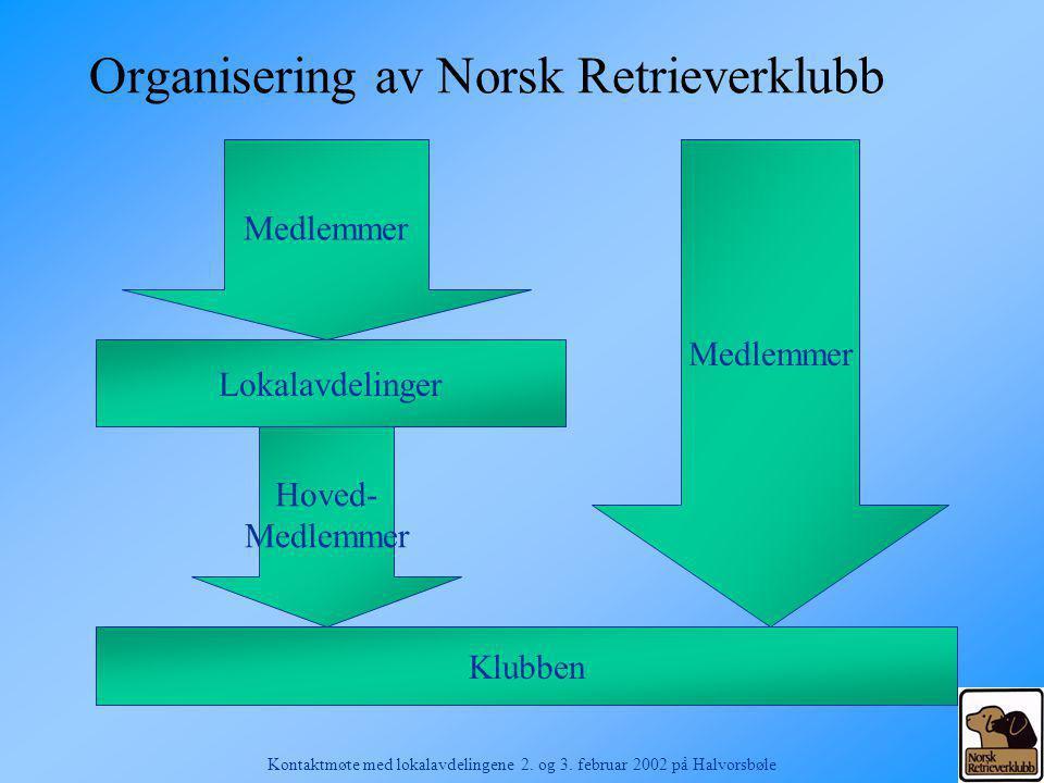 Organisering av Norsk Retrieverklubb