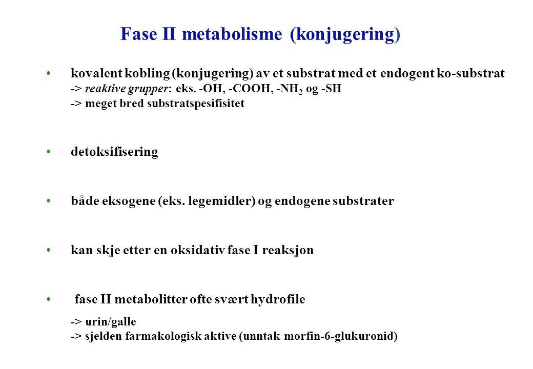 Fase II metabolisme (konjugering)
