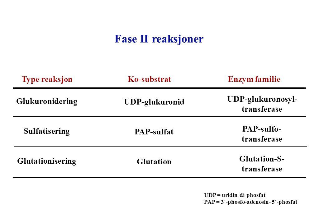 Fase II reaksjoner Type reaksjon Ko-substrat Enzym familie