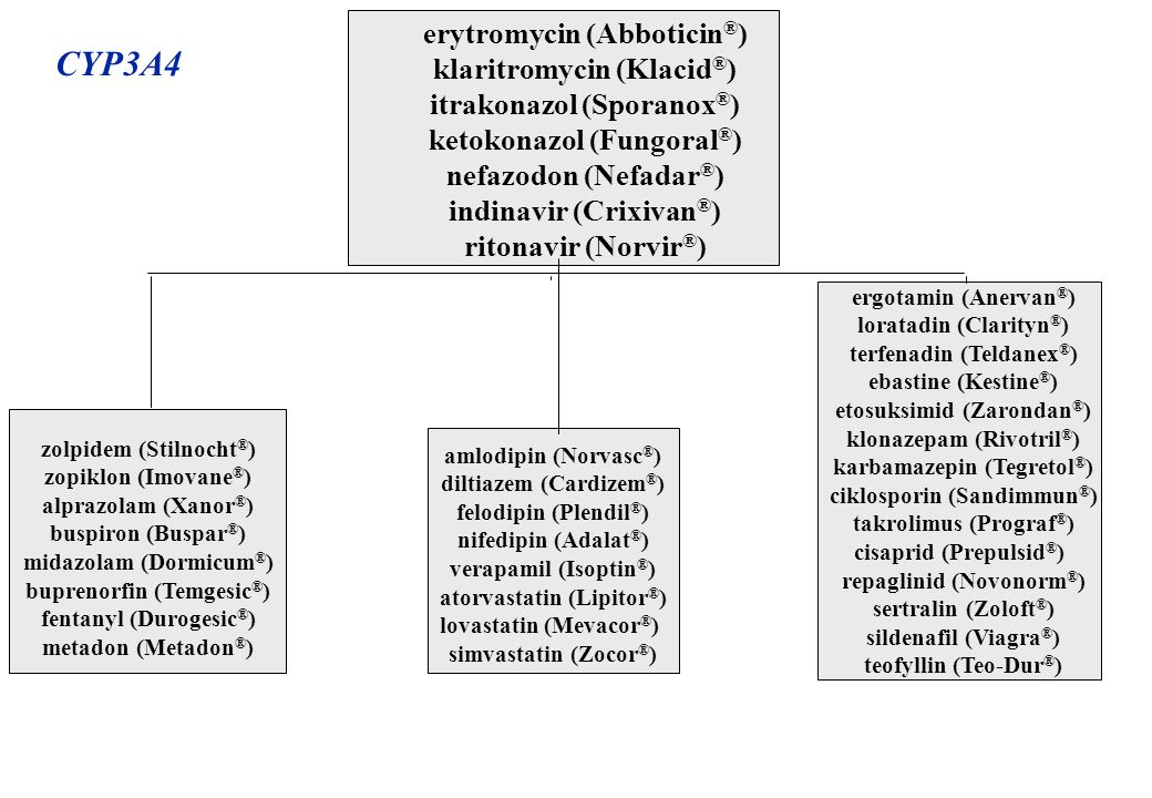 CYP3A4 erytromycin (Abboticin®) klaritromycin (Klacid®)